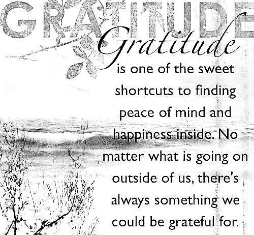 gratitude for website